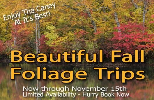 http://www.canoethecaney.com/wp-content/uploads/2015/10/fall-foliage2.jpg
